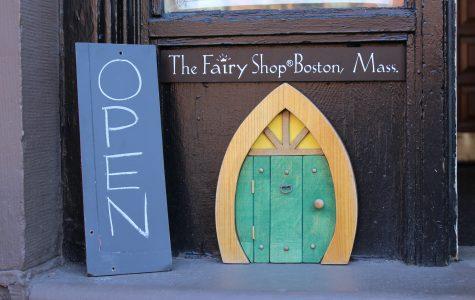 Newbury Street Fairy Shop opens door to magical realm