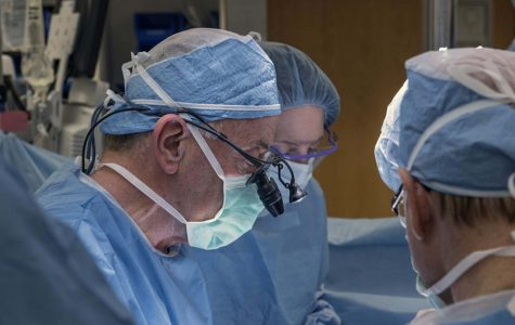 First U.S. uterine transplant fails