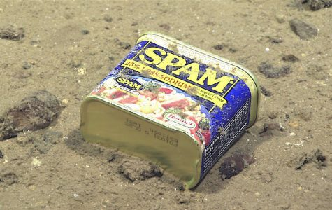 Extremely high levels of pollutants found in deep sea