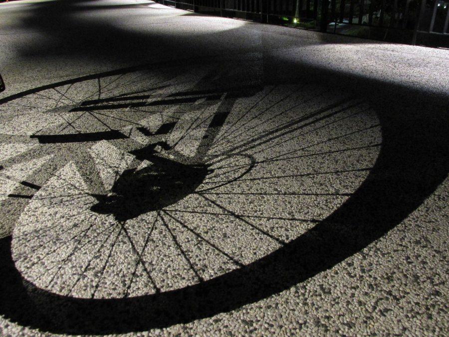 pic of bike wheel in shadow