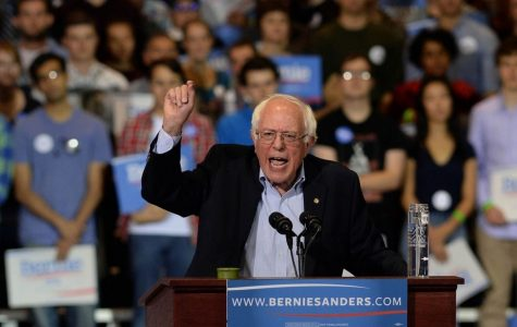 Sanders draws record crowd