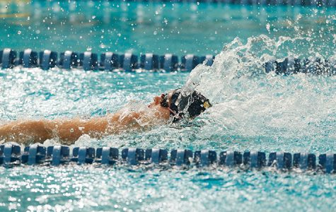 Swisher, Giraldi lead swimming and diving in season opener over Westfield State