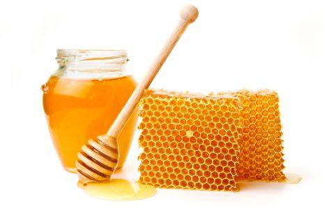 Why some vegans don't eat honey