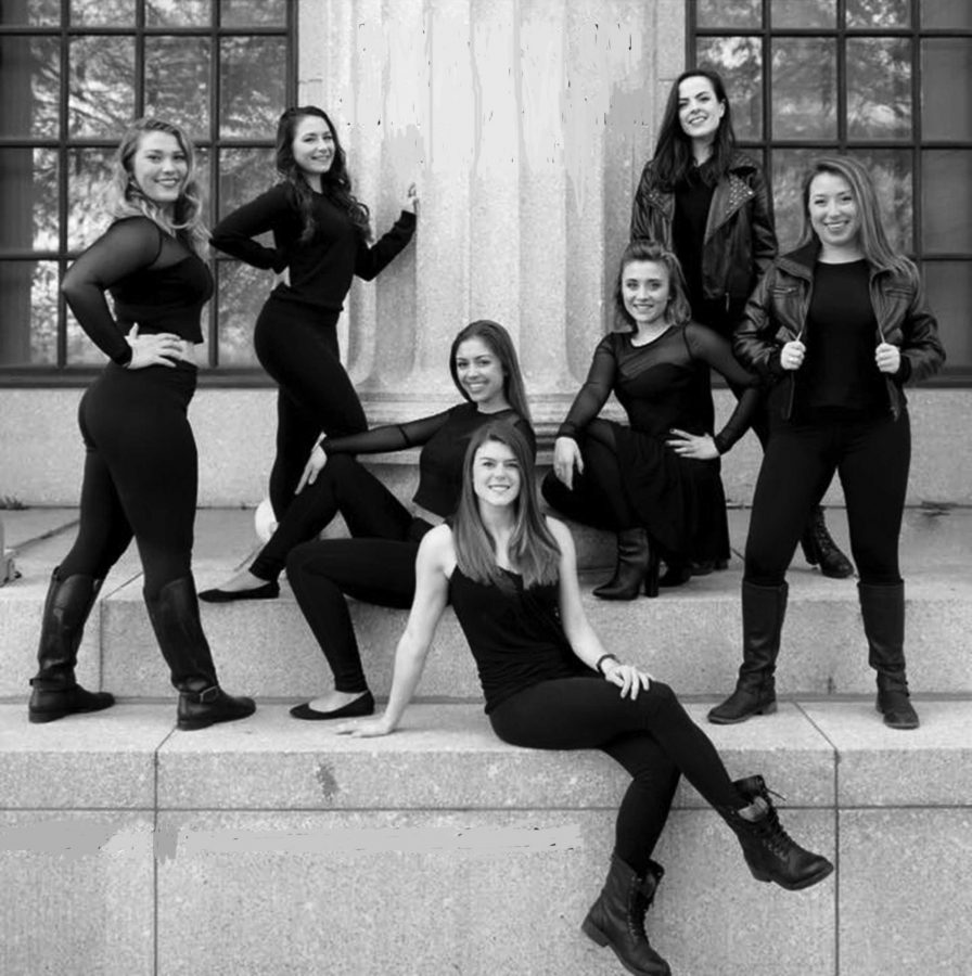 Photo of the dance company