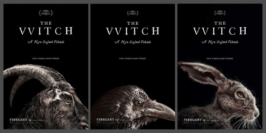Movie poster for 'The Witch'