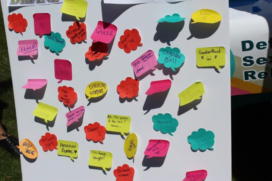 Students wrote their gender and sexual identities on post-it notes