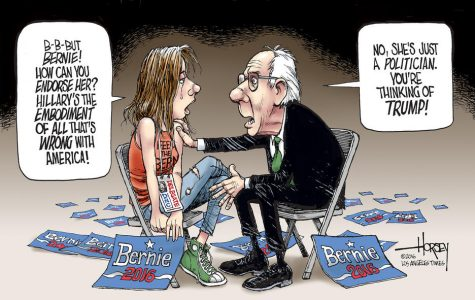 Grieving for the Bernie campaign