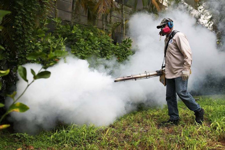 Mosquito pesticides for Zika virus affect bees