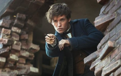 'Fantastic Beasts and Where to Find Them' is the start of a new magical tale
