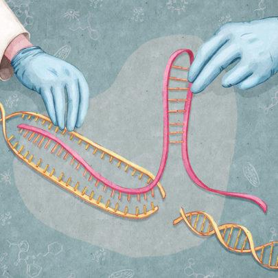 Guidelines emerge regarding human gene editing