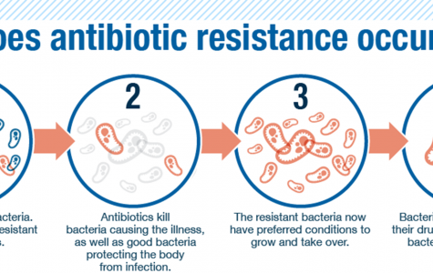 Antibiotic-resistant bacteria threat