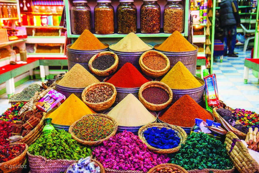 From NYC to Morocco: students' spring break adventures