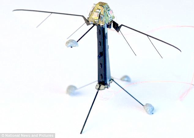 RoboBees could aid insects on pollination of crops