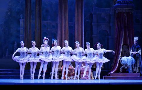 'Sleeping Beauty' fills fairy-tale expectations