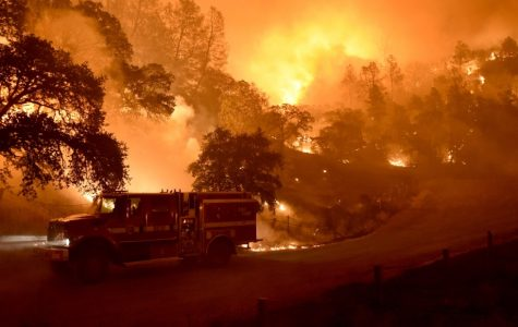 Wildfires wreak havoc in western U.S.