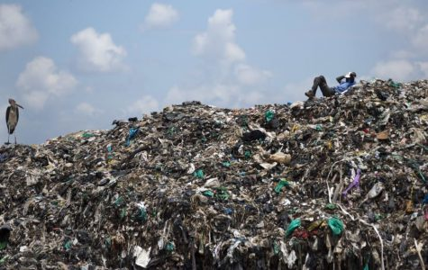 Good news: International crackdown on plastic usage