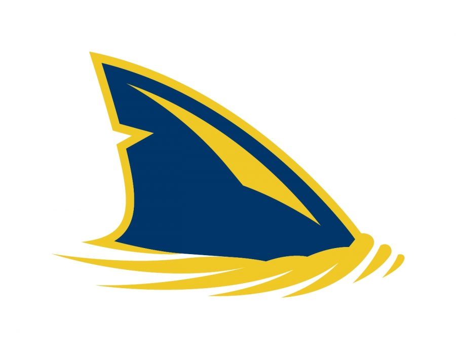 Logo courtesy of Simmons University Athletics