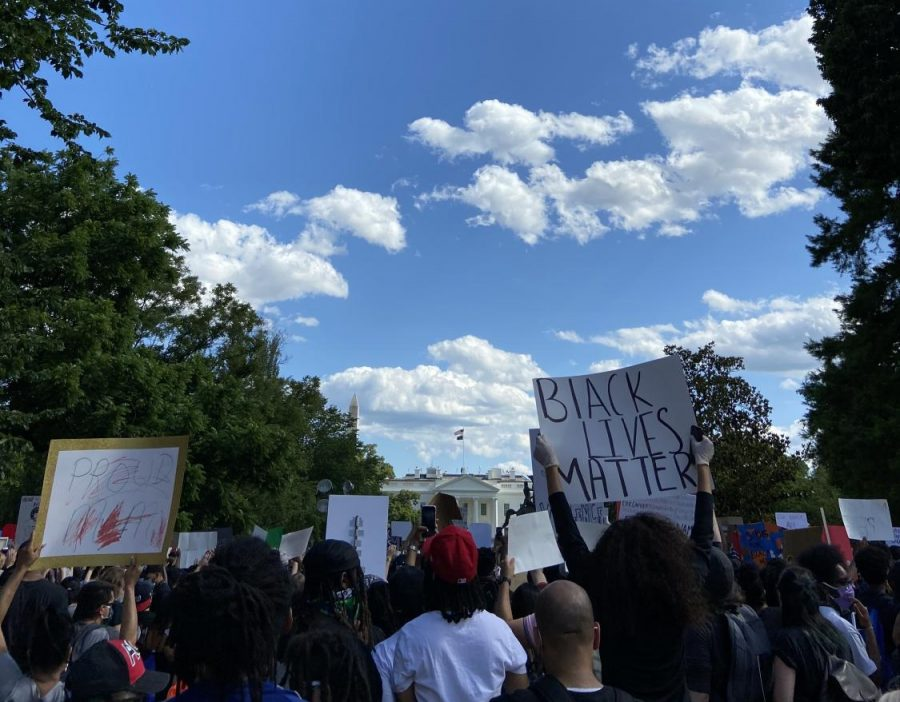 A photo of marchers in D.C., taken by Madden.