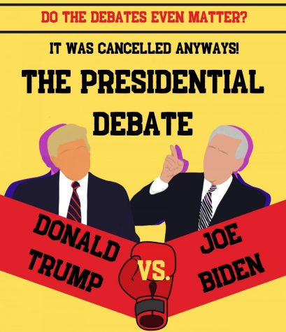 Do presidential debates matter? In my opinion: no