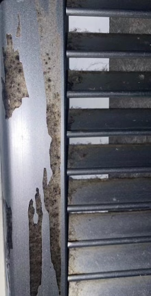 Mold in Simmons dorms not toxic, but stresses residents